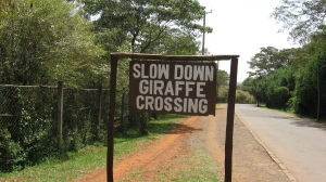 Slow down...and enjoy life! (I took this picture close to the Giraffe Center in Nairobi, Kenya. It makes me smile!)