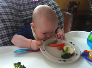 Caleb at ~ 6 months being introduced to solid food. Mmm...yummy plate!