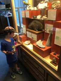 A visit to Redpath museum